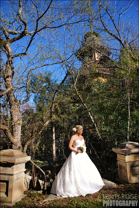 Eureka Springs Wedding Castle Rogue's Manor  Beaver Arkansas Bride dress