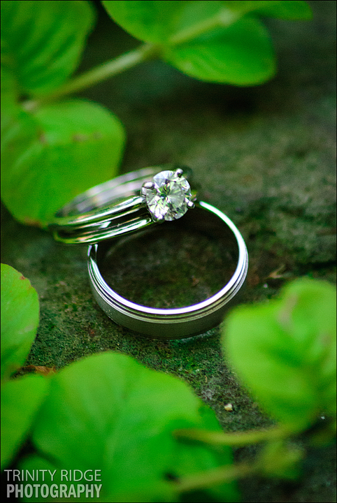 The Garden Room Fayetteville Arkansas Wedding rings