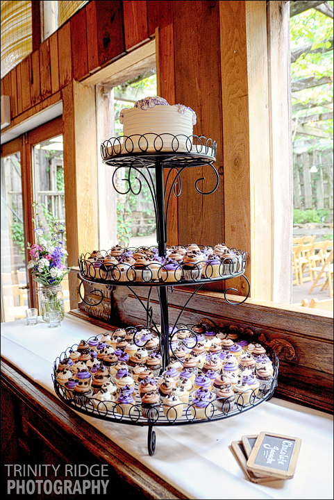 The Garden Room Fayetteville Arkansas Wedding Reception Cupcakes