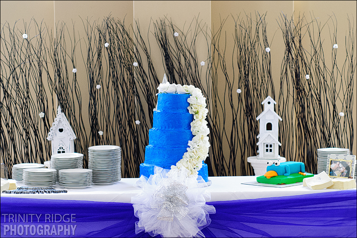 blue wedding cake winter decor