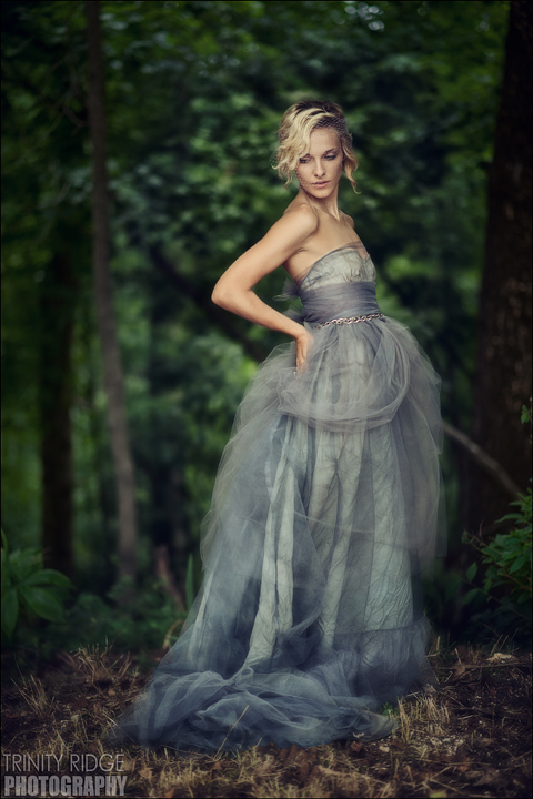 Vintage Tulle Dress - Wedding Gown - Gray - Purple - Model Arkansas Fashion Photography