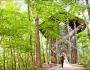 Thorncrown Chapel Wedding – Eureka Springs Arkansas Photographers – Samuel andAmanda